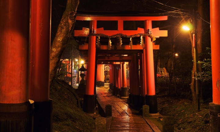 Getting Lost in a Maze of Torii