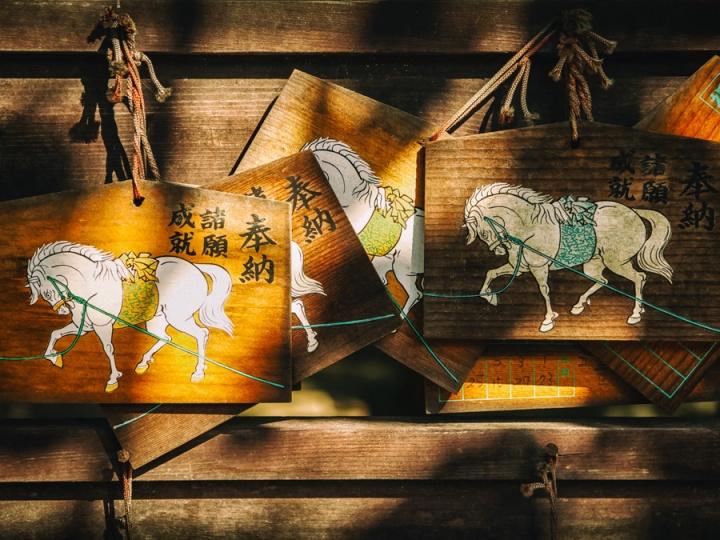 Wishes on Horseback
